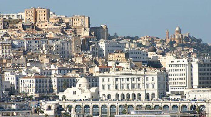algérie immobilier